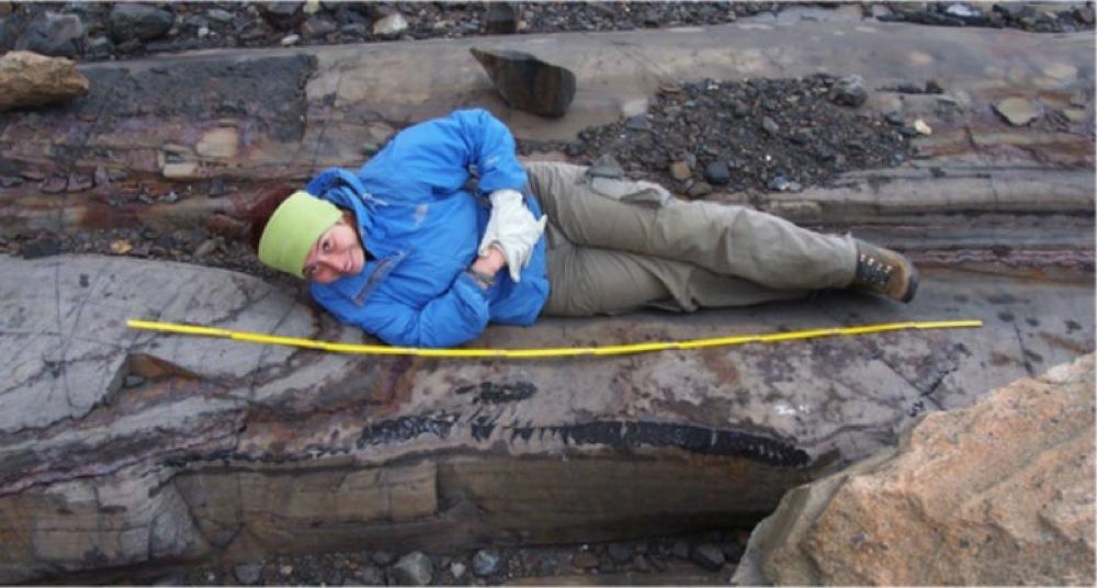 I ghiacciai si sciolgono e rivelano scheletri di rettili for Nomi di rettili