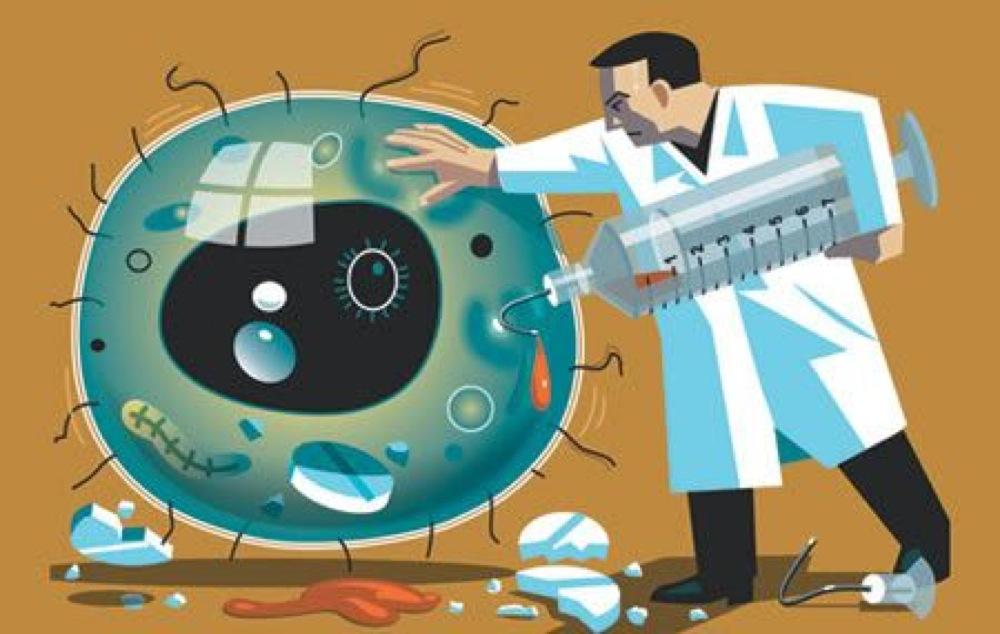 Trovato il tallone di achille dei batteri resistenti agli