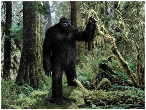 Bigfoot avvistamento italia
