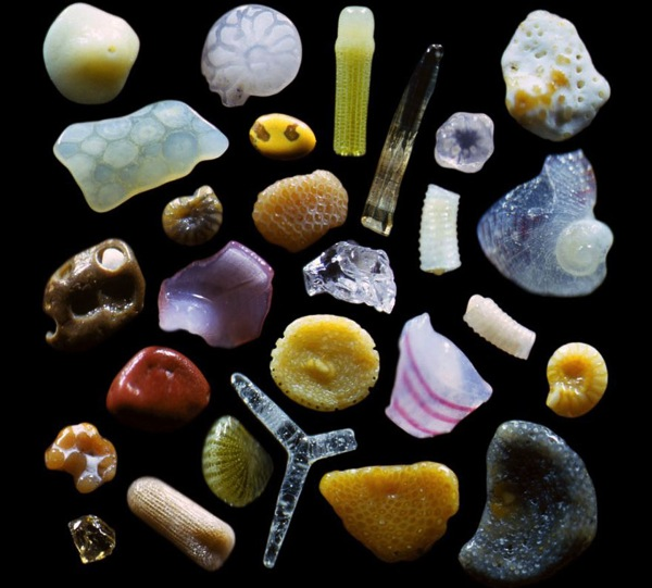 Sand grains under microscope gary greenberg 1