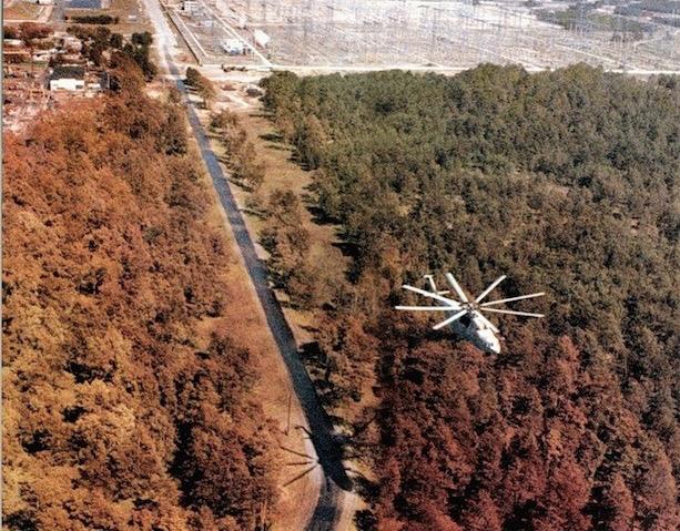 Risultati immagini per Nelle specie mutanti di Chernobyl la soluzione dei viaggi spaziali
