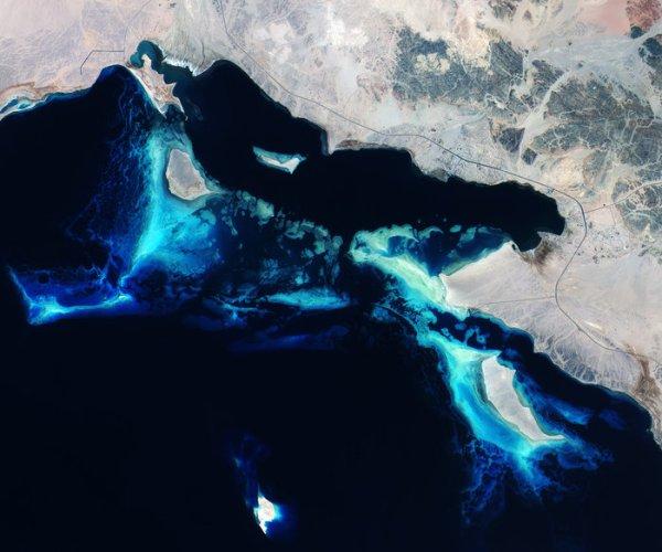 Deep_blue_Red_Sea_reefs_node_full_image_2