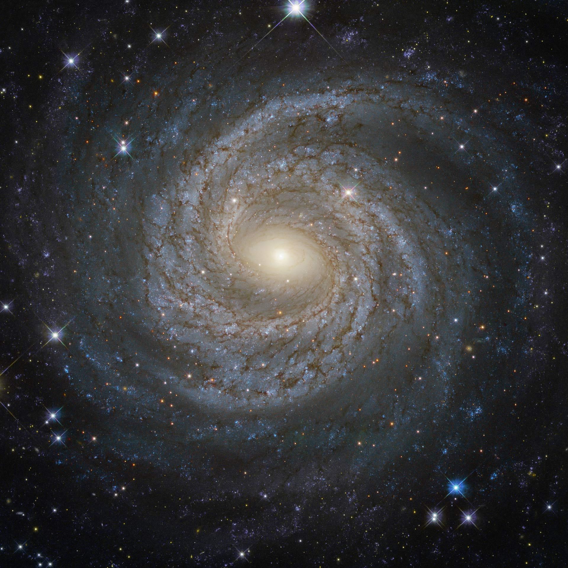 image_3847e-NGC-6814