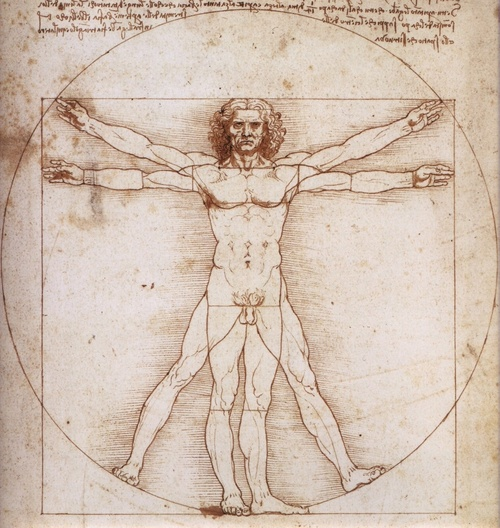 Leonardo-da-Vinci-luomo-vitruviano