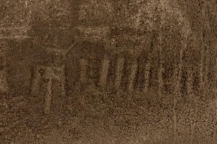 new-nazca-2.jpg