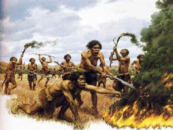fire.field.erectus