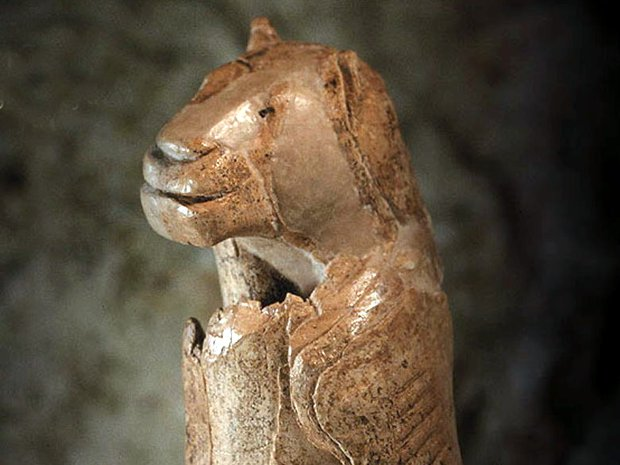 leone-umano