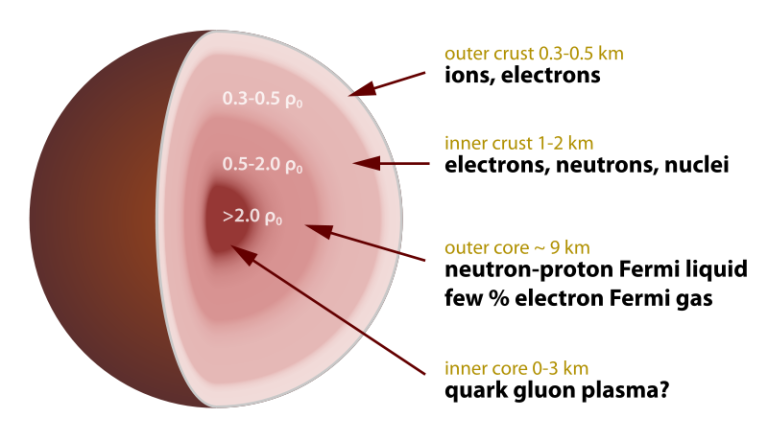 800px-Neutron_star_cross_section.svg