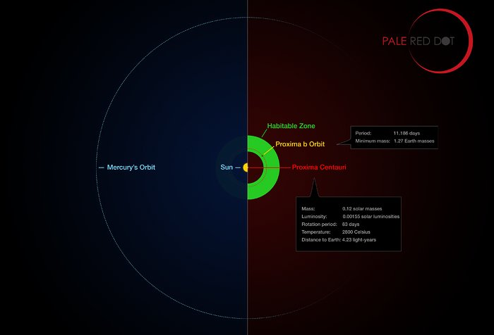 Proxima Centauri and its planet compared to the Solar System