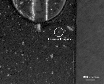 yaman_evijarvi3-350x283