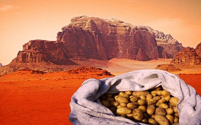 marte-scienziati-patate.jpg