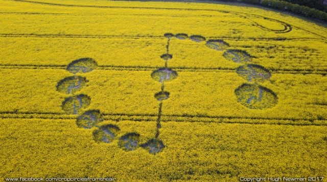 crop-circle-Willoughby-Hedge649-May.-05-07.47.jpg