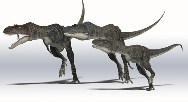 pelle-dinosauri-01.jpg