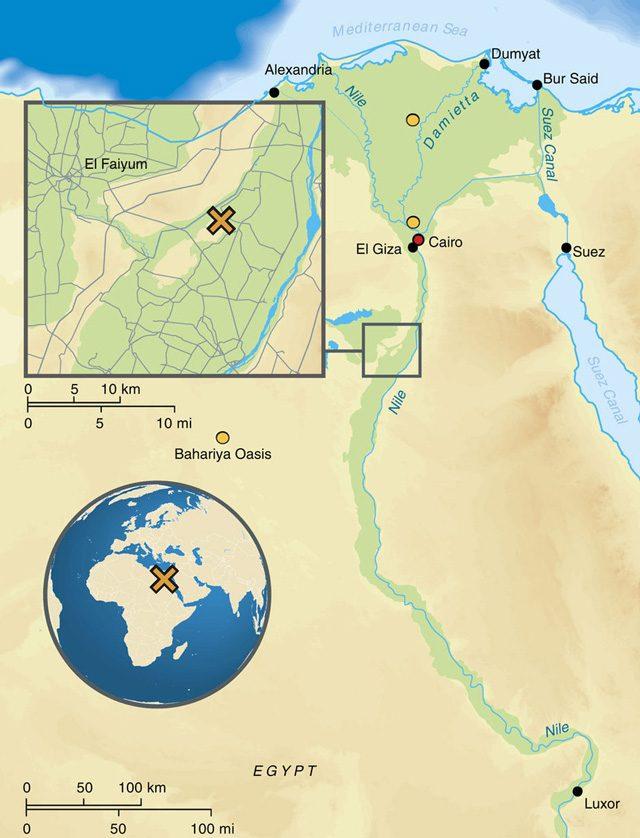 sito-archeologico-abusir-el-meleq.jpg
