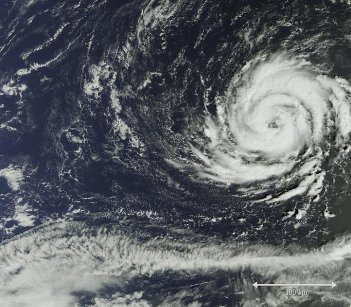 1508228446576-uragano-ophelia_2017_immagine_satellite_ESA.jpeg