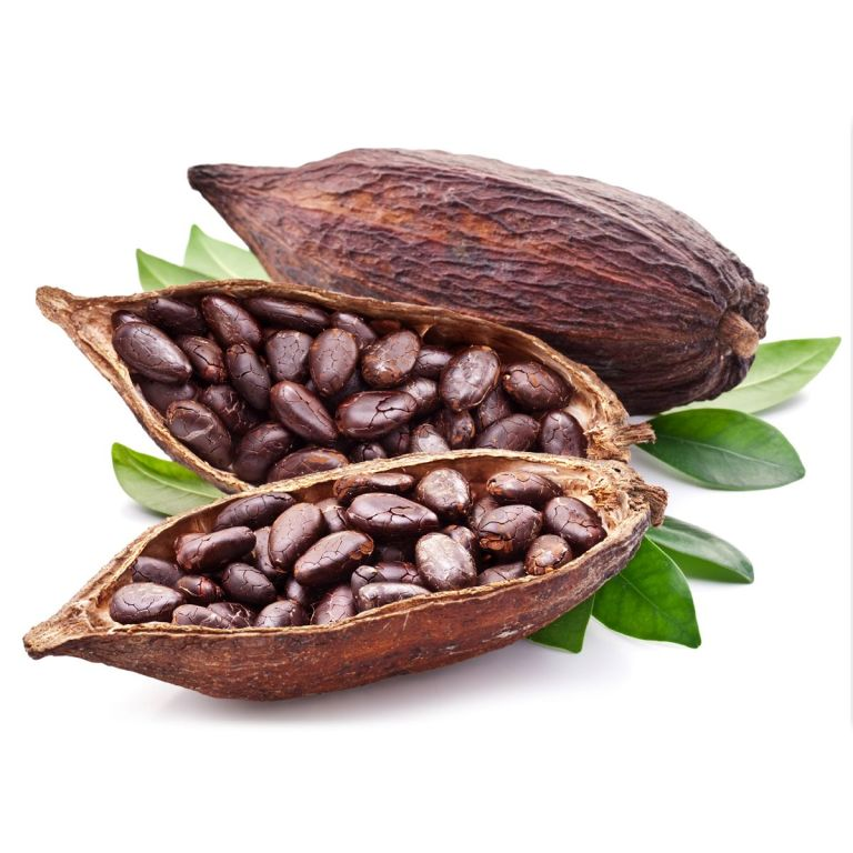 Fave-di-Cacao-intere-tostate-266.jpg