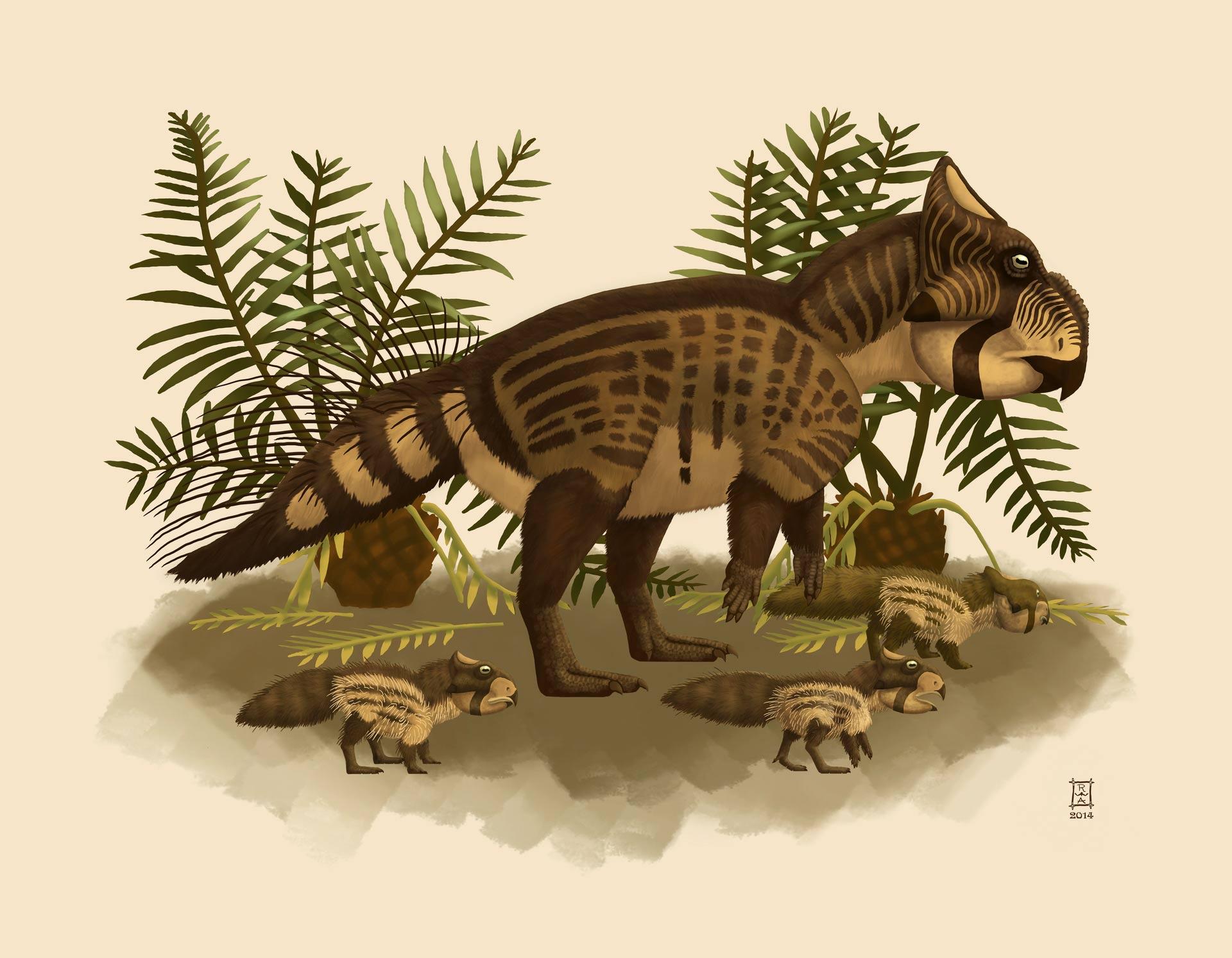 Datazione al radiocarbonio di dinosauro